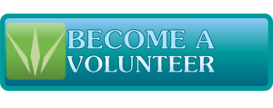 Button_Become a Volunteer